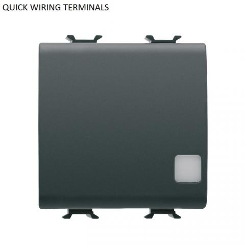 ONE-WAY SWITCH illuminable 2P 16AX - quick wiring terminals