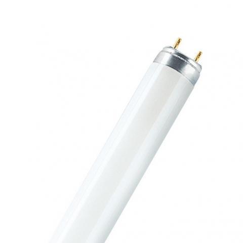 L 30 W/930 T8