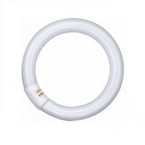 Луминесцентен кръг L 40 W/840 G10Q