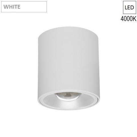 Ceiling Lamp/Spot Ø60 L250 LED 7.3W 4000K white